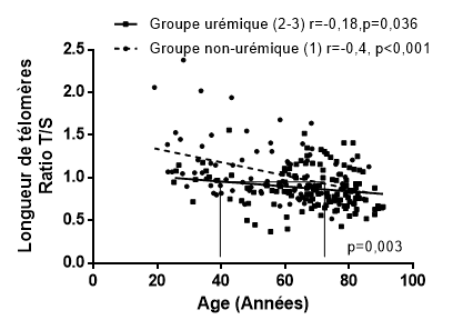 Longueur télomères